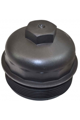 Filter & filter cover section